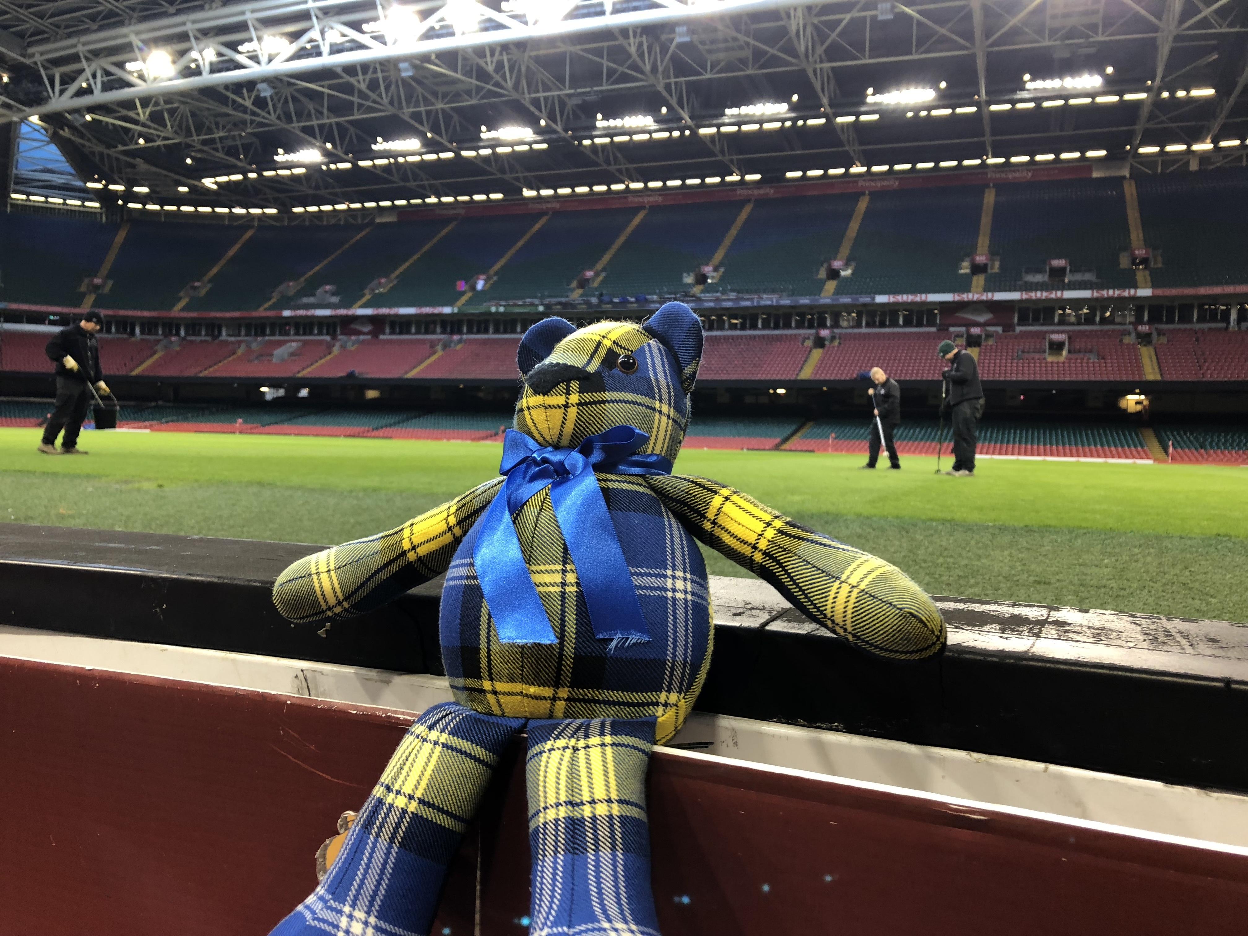 Doddie'5 Tartan Ted - Principality Stadium