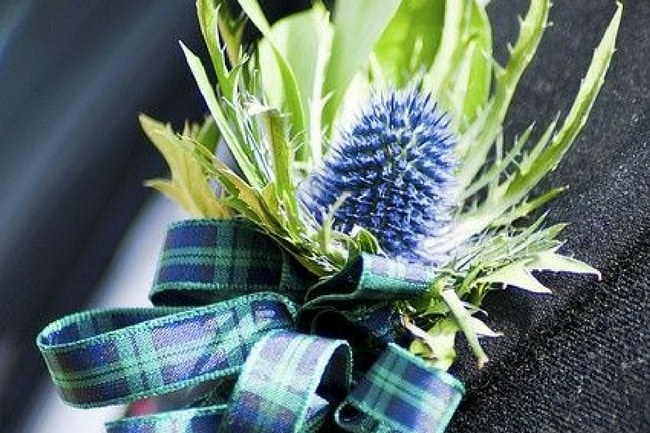 Scottish Tartan Ribbon Update