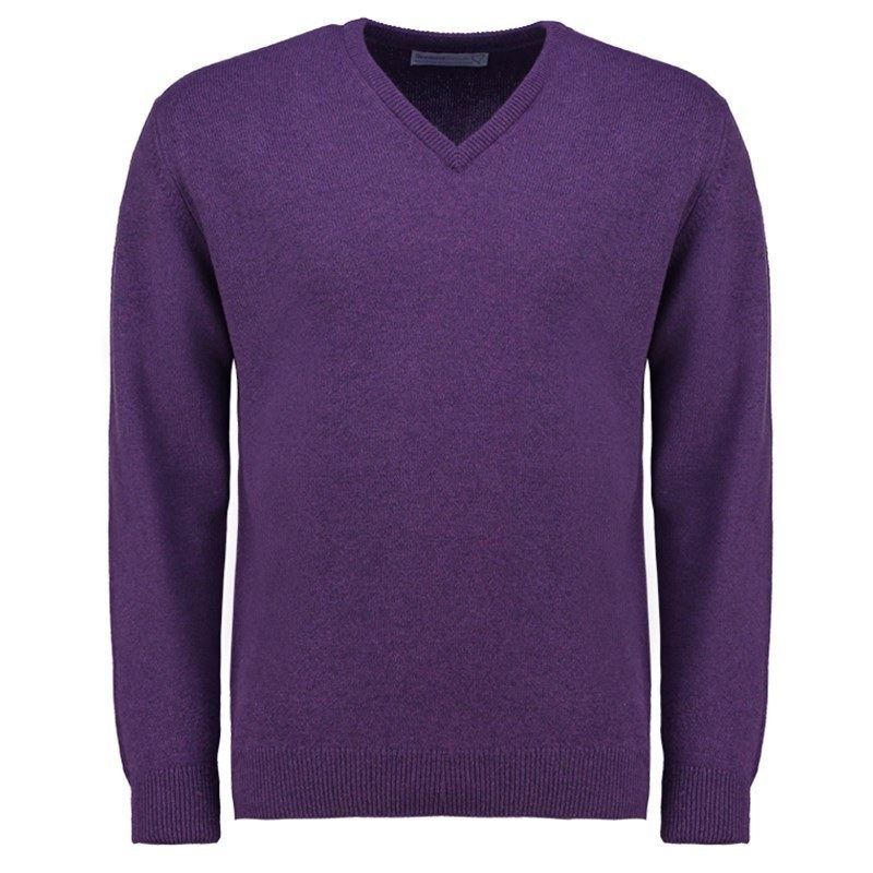 Men's Vee Neck Lambswool Sweater in Regalia