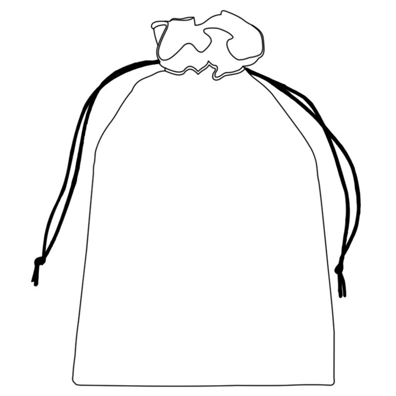 Tartan Shoe Bag