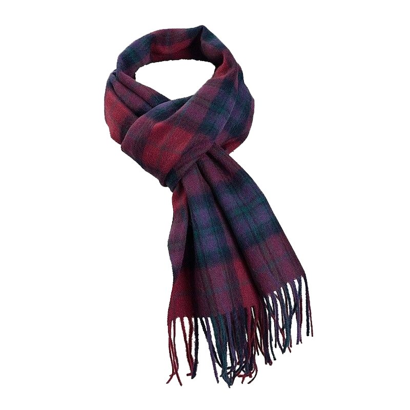 Pride of Scotland Brushed Wool Tartan Scarf in Pride of Scotland Autumn
