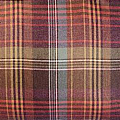 Scottish Heritage Crimond Clover Tweed